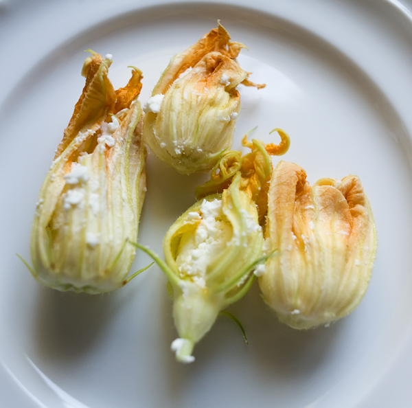 goat cheese stuffed squash blossoms