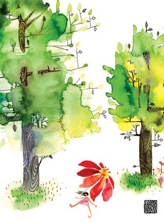 G35_summertrees