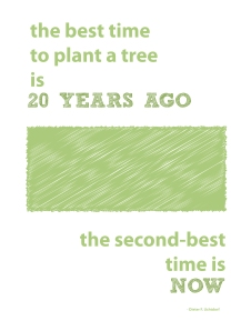 the best time to plant-05